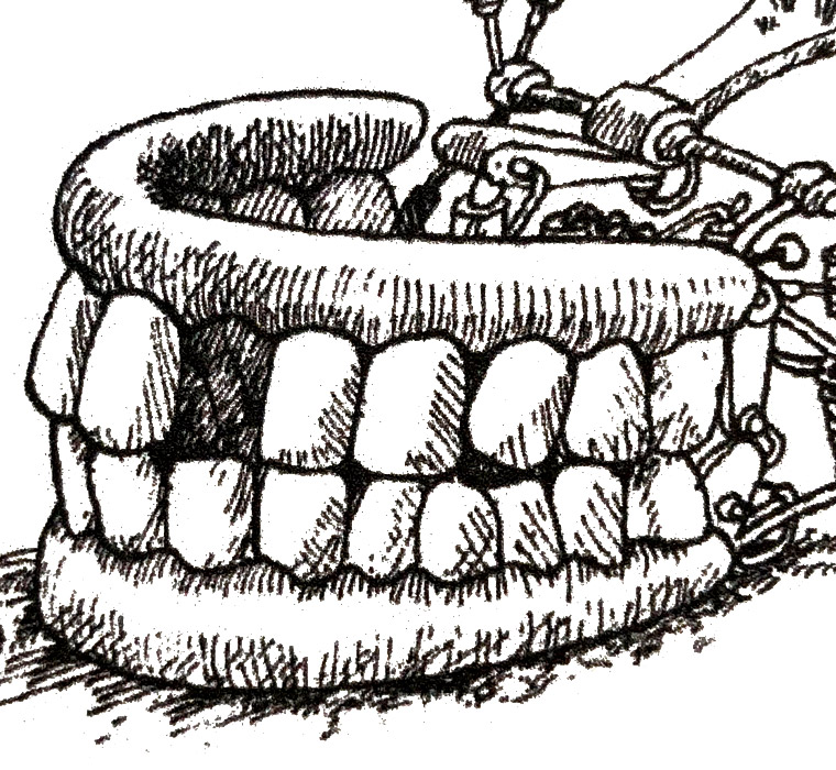 Dr Fegg's Do-it-yourself Teeth